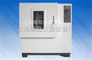 401A老化试验箱 工业烘箱 上海试验箱