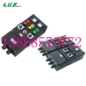 多回路防爆防腐配电箱BXM8050-T