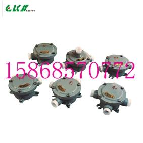 BHD-G3/4二通吊防爆接线盒