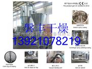 FLP-5型多功能制粒包衣机,胃溶包衣机,制粒包衣干燥一体机