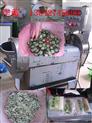切菜机价格 切瓜果的机器 蔬菜切丝机 先进切菜机