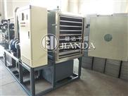 JZG系列冷冻真空干燥机
