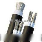 YJLV5*16电力电缆