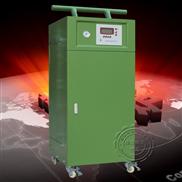 節能環保型高溫高壓電蒸汽清洗機
