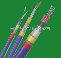 ZR-KJVVPR 20*1.0仪表电缆