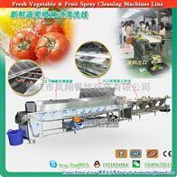 T-HP-5000新鲜蔬果喷淋式清洗线