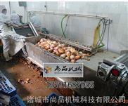 【ISO9001认证】新疆伊宁土豆清洗去皮机 红薯清洗去皮机 尚品公司客户认证产品
