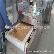 肉類浸膏干燥滅菌設備