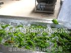 辣椒清洗机|蔬菜气泡清洗机放心机械