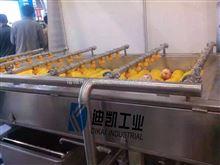 DK-4000果蔬加工设备去污泥去药残清洗机