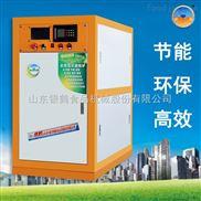 银鹤新型节能采暖炉 全预混冷凝采暖锅炉 直供3000-5000平方 18162067983