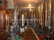 自酿啤酒设备  精酿啤酒机  家用酿酒设备