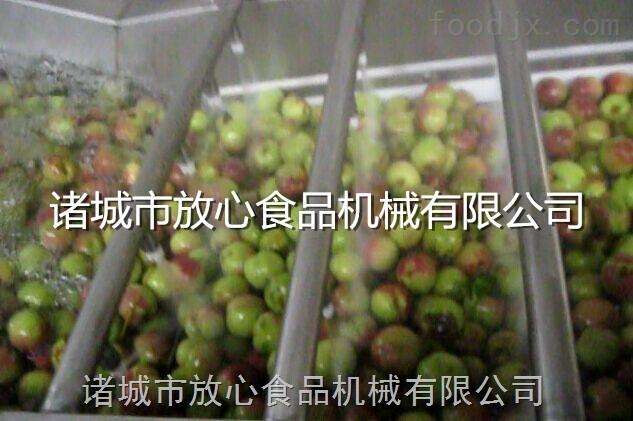 水果蔬菜清洗机