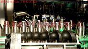 玻璃瓶灌裝封蓋機