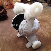 小型全自动防爆型气动隔膜泵