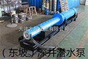 QJH海水潛水泵-天津不銹鋼海水泵-鲅魚圈耐腐蝕海水潛水泵