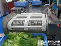 果蔬清洗输送机,上海沁艾机械