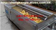 GB-800-红薯清洗去皮机 不锈钢红薯清洗设备 小型红薯清洗脱皮机
