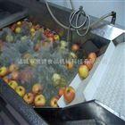 小型水果清洗机