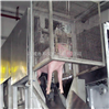 猪屠宰设备 生猪屠宰流水线 生猪托腹式三点麻电器托胸麻电机