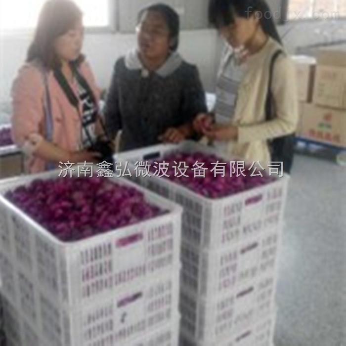 玫瑰花微波干燥设备厂家