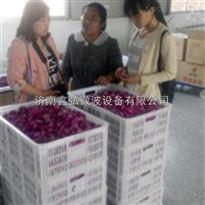 XH-30玫瑰花微波干燥设备价格