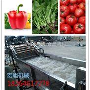 根茎类叶类清洗机 水果 蔬菜气泡清洗机 商用大型洗菜机