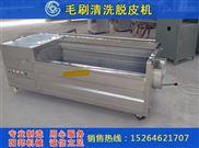 GB-1000-荸荠清洗机 山核桃清洗机 土豆清洗机