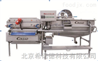 XND220蔬菜旋流式冰水清洗机