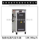 LDR型自动免检蒸汽发生器