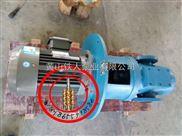 SNH5300ER46D12.2-W12w双螺杆泵