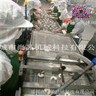 广州留尾虾生产线