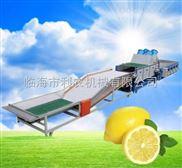 供应利农牌水果清洗风干机/果蔬初加工机械/清洗设备