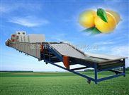 供应利农牌水果清洗打蜡分选设备