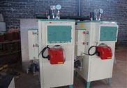 高效节能蒸汽锅炉 生物质蒸汽发生器