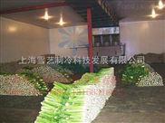 【蔬菜冷库】芹菜在冷库能储存多久