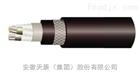 CJPJ/SC-0.6/1KV-3*10船用电缆
