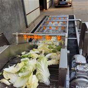 果蔬清洗机/净菜加工设备