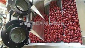 红枣清洗机 果蔬清洗机 水果清洗机