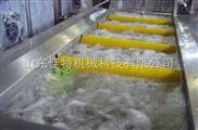 全自動氣泡蔬菜清洗機廠家
