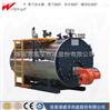 WNS系列工業燃氣蒸汽鍋爐
