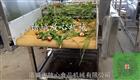 FX-800香菇清洗设备价格 菌类清洗机