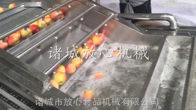 优质不锈钢果蔬气泡清洗机