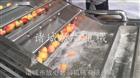 FX-800优质不锈钢果蔬气泡清洗机