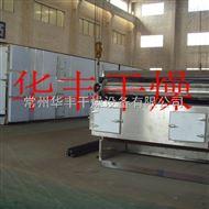 DWT大蒜片带式干燥机