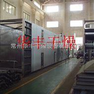 DWT山药带式干燥机