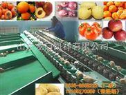 2016年超便宜的多功能水果分选机,分选水果大小的机器