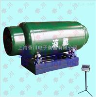 DCS-XC-GEX防爆钢瓶电子秤