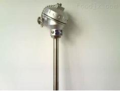 WZP2-231-F高温防腐热电偶