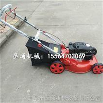 性能稳定草坪机 自走式国产剪草机